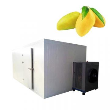 Freeze Dryer for Industrial Vacuum Freeze Dryer Fruit Food